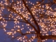 Instrumental MP3 Fireflies - Karaoke MP3 as made famous by Owl City