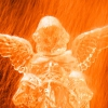 Karaoké Les anges, les roses et la pluie Claude François