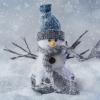 Karaoké Au royaume du bonhomme hiver Roch Voisine