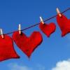 Karaoké Everybody Falls in Love Again Ruud Hermans