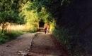 Follow You Follow Me - Genesis - Instrumental MP3 Karaoke Download