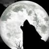 Karaoke Bark at the Moon (2002 remix) Ozzy Osbourne